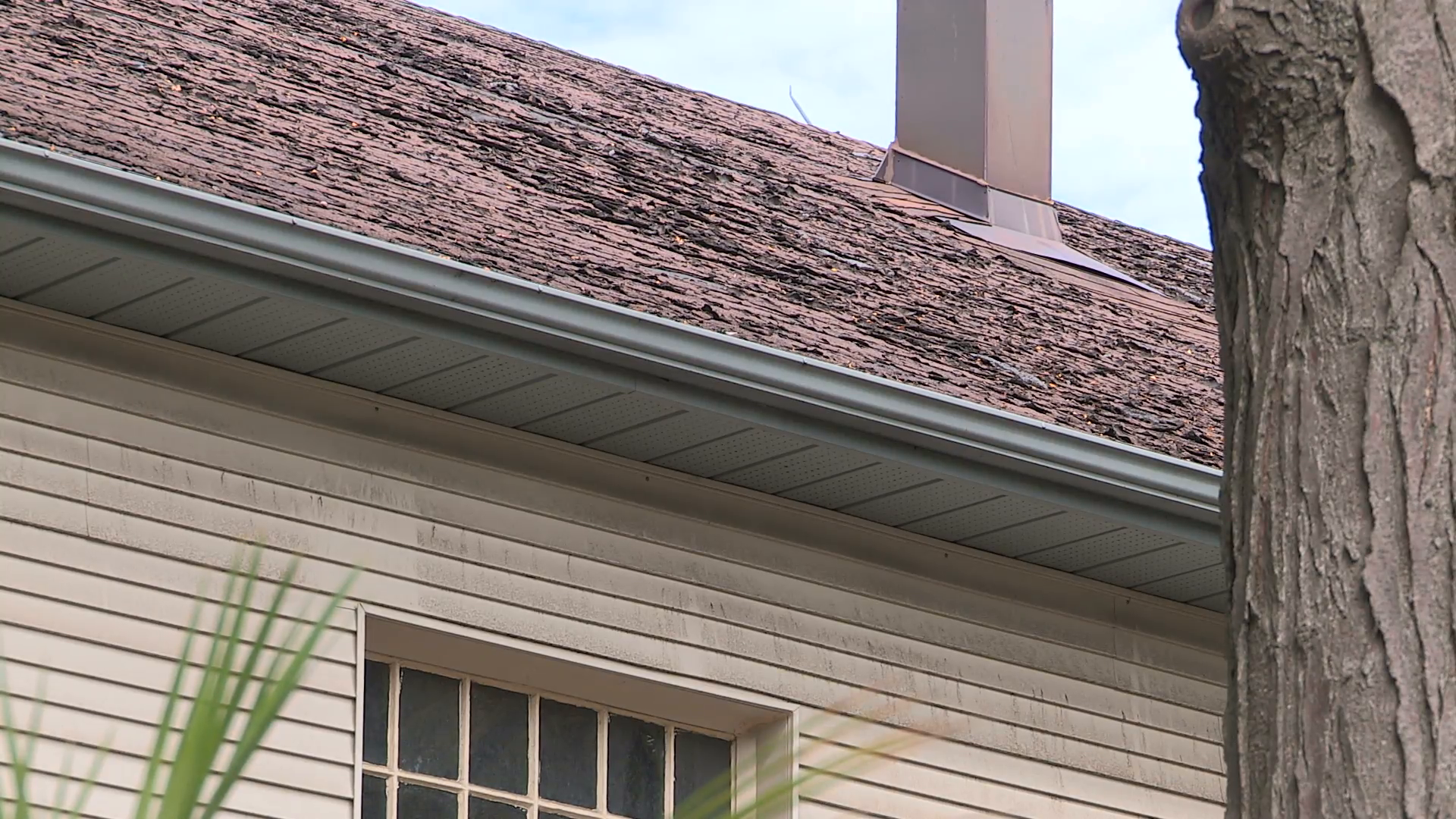 roof-with-worn-and-damaged-shingles_nkwgeyqye__F0000